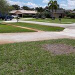 CK Tree Service - Delray, Boynton, Boca Raton, Tree Trimming, Tree Removal, Stump Grinding (46)